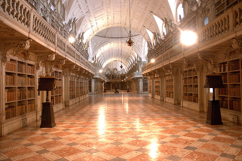 library of the national palace of mafra